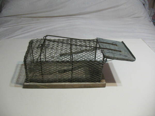Old Antique Spring Loaded Small Wire Cage Humane Rodent Trap Mouse Rat Chipmunk