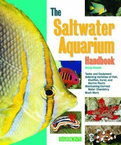 The Saltwater Aquarium Handbook : Everything about Setting up a Marine...