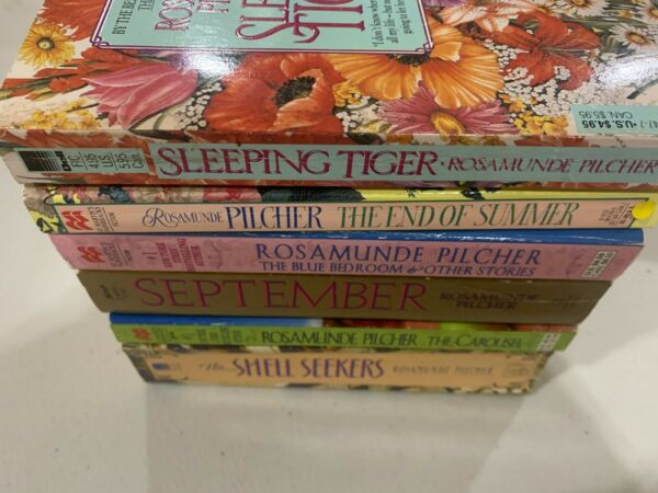 Lot 6 Rosamunde Pilcher The Shell Seekers Sleeping Tiger The Carousel