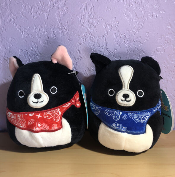 Squishmallow 5quot; Tommy and Teddy Black Dog with Bandana Mini Plush Cute Kellytoy $24.99