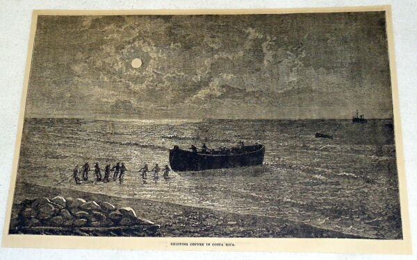 1882 magazine engraving SHIPPING COFFEE IN COSTA RICA