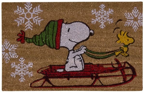 Snoopy In Outdoor Door Mat