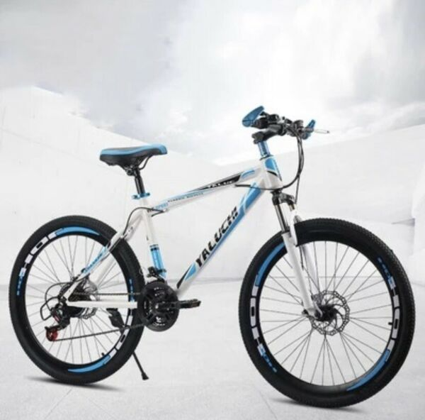 Mountain Bike $120.00