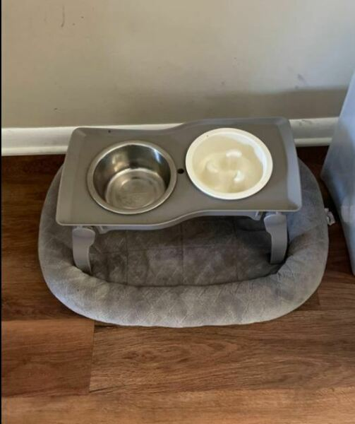 Pets Dog Dishes 2 Bowls Standing For Medium Dog Water And Feeding Used $42.59
