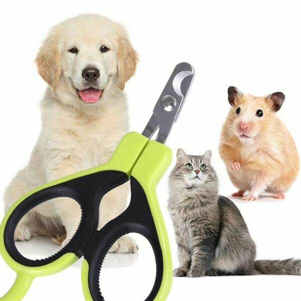 Pet Nail Clippers Stainless Steel Grooming Scissors Cats Claw Dog Nails Trimmer $7.95
