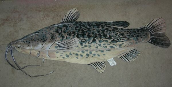 Catfish pillow make your own big fish pillow cotton blend 20 x 54 inches huge