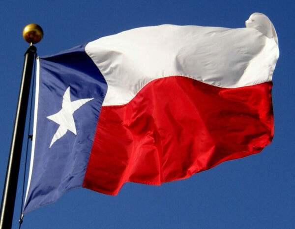 TEXAS FLAGS FULLY SEWN NYLON MADE IN USA LONE STAR STATE NEW 12X18