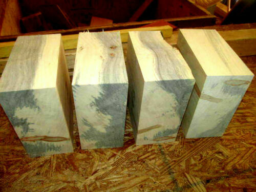 FOUR BOXELDER BOWL BLANKS LATHE TURNING BLOCKS WOOD LUMBER CARVE 6quot; X 6quot; X 3quot;