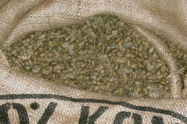 5 lbs of Authentic Kona Extra Fancy Coffee - Customize Your Order!