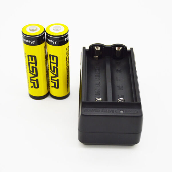 2pcs ETSAIR 18650 3.7V 9900mAh Rechargeable Li-ion Battery Batteries + Charger