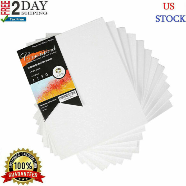 12PC Pre Stretched Canvas Lot Blank Frame 8X10