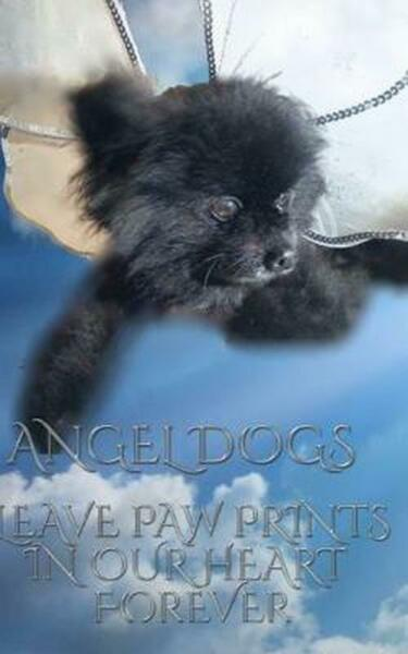Angel Dogs in Heaven by Sir Michael Huhn English Paperback Book Free Shipping $18.99
