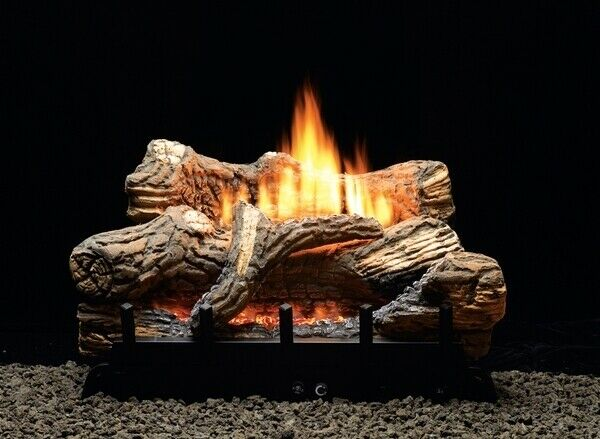 24in Gas ceramic log fire place insert great for backyard fire feature too