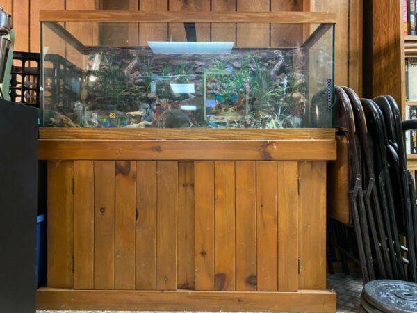 75 gallon fish tank with stand $235.00