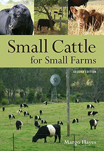 Small Cattle for Small Farms by Hayes Margo Paperback $64.95