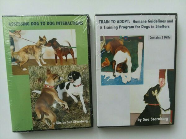 Assessing Dog to Dog Interactions Train to Adopt DVDs Sue Sternberg training $44.99