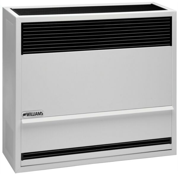 Williams 3003822 30000 BTU Direct Vent Wall Furnace Heater Natural Gas In Stock