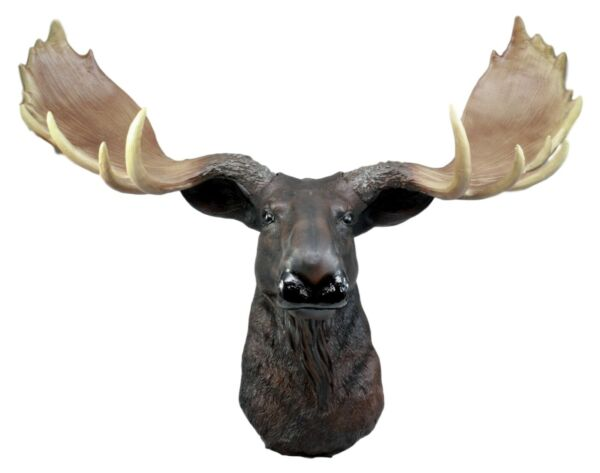 Moose Head Bust Hanging Wall Mount Home Decor Collection Statue Figurine