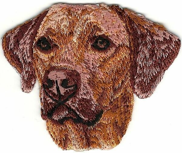 2quot;x2 1 2quot; Rhodesian Ridgeback Head Portrait Dog Breed Embroidery Patch $2.99