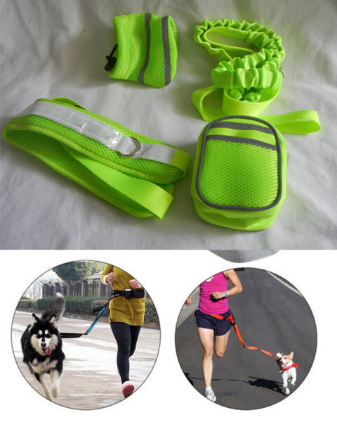 Pet Dog Out Running Jogging Hand Free Lead Leash Waist Belt w two Pockets 4p set $13.99