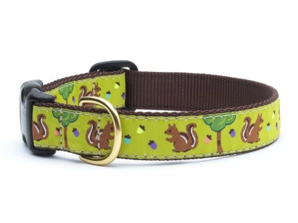 Up Country Dog Design Collar Made In USA Nuts amp; Squirrels XS S M L XL XXL $22.00