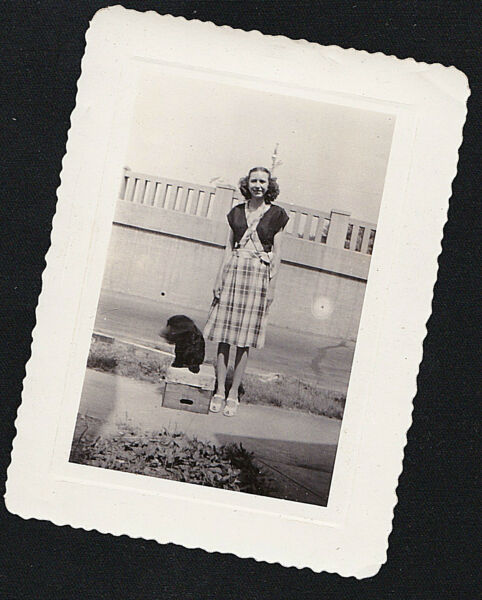 Antique Photograph Woman Standing With Adorable Puppy Dog Sitting on Box