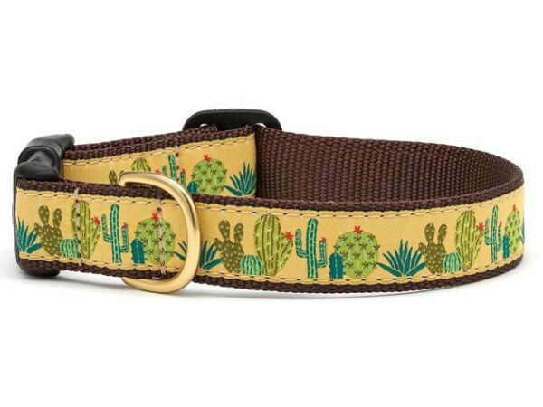 Up Country Dog Puppy Design Collar Made In USA Succulents XS S M L XL XXL $22.00