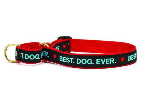 Dog Martingale Collar Up Country Made In USA Best Dog Ever S M L XL $23.00