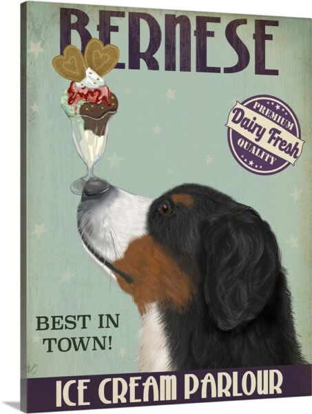 Solid-Faced Canvas Print Wall Art entitled Bernese Ice Cream