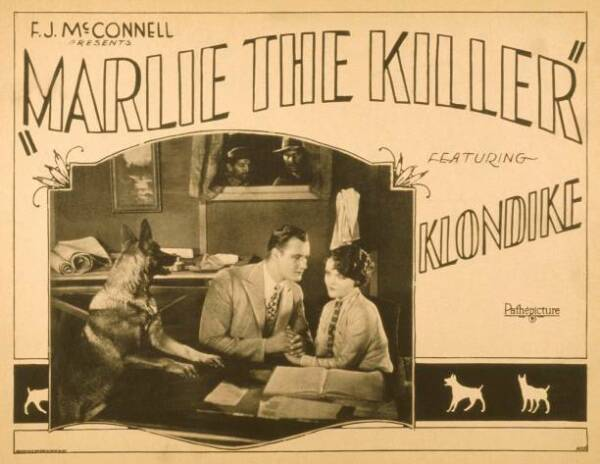 OLD MOVIE PHOTO Marlie The Killer Poster Klondike The Dog Francis X Bushman AU $8.50