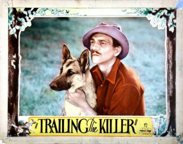 OLD MOVIE PHOTO Trailing The Killer Lobby Card Caesar The Dog Francis On AU $8.50
