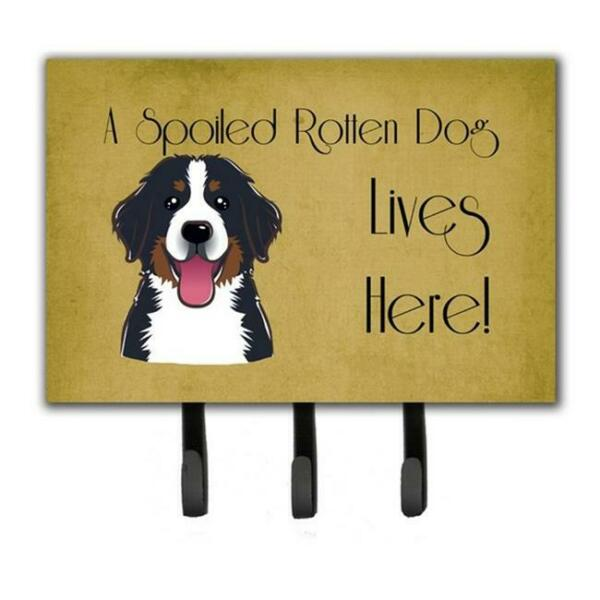 Carolines Treasures BB1485TH68 Bernese Mountain Dog Spoiled Dog Lives Here Le... $30.21