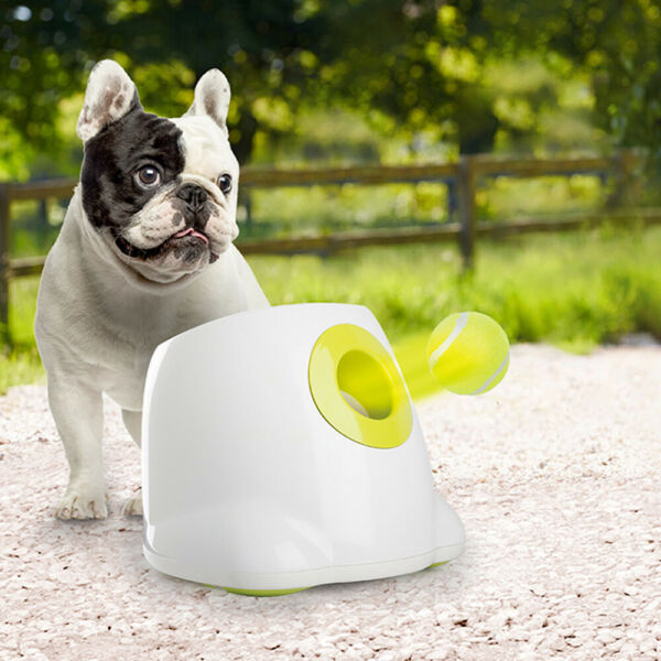 All for Paws Interactive Automatic Ball Launcher for Small and Medium Dogs $69.99