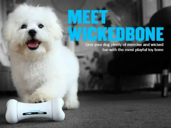 Wickedbone Smart Bone Automatic And Interactive Dog Toy With App Control! $20.00