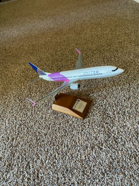United Airlines 737-800 March of Dimes (Pacmin)