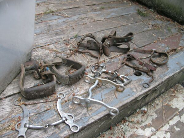 Lot of 6 Antique Vintage Horse Harness Bits Bridles STIRRUPS WALL HANGING ETC