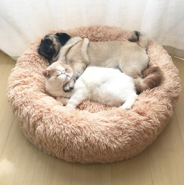 Super Soft Dog Bed Plush Cat Mat Dog Beds For Large amp; Small Dogs and Cats $18.99