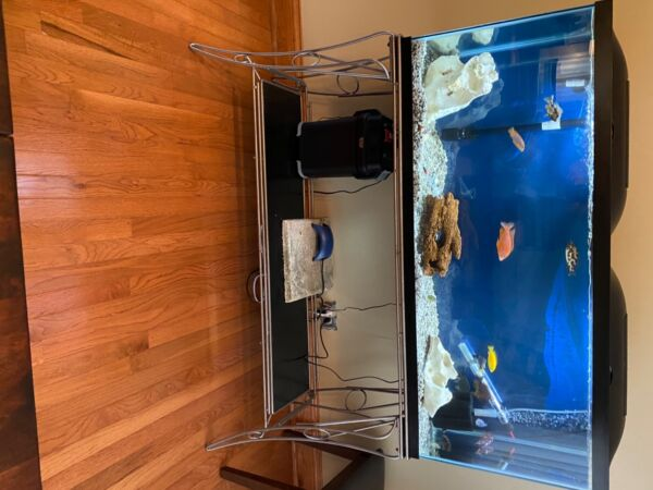 2 55 gallon fish tanks w stands for both. $160.00