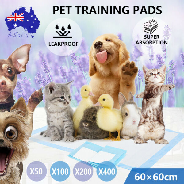 Puppy Training Potty Pee Wee Pads for Dog Xlarge jumbo Small Pet Doggie Piddle AU $94.98