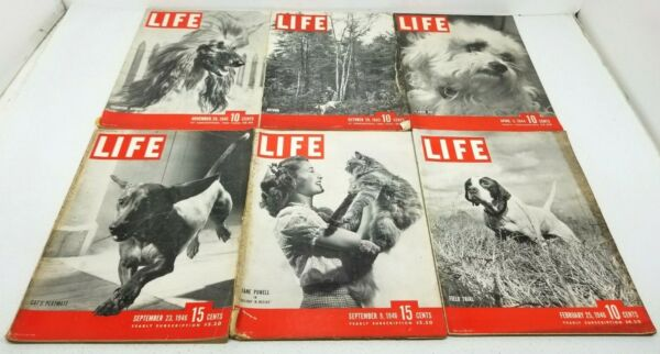 Lot of 6 Vtg 1940s LIFE Magazine All CAT or DOG COVERS Great Advertising $22.95
