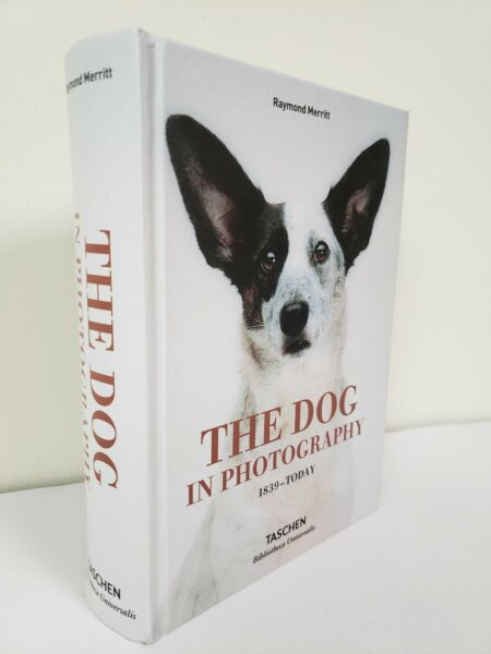THE DOG IN PHOTOGRAPHY 8quot;x6quot;x2quot; 1839 Today by TASCHEN BRAND NEW HARDCOVER $22.80