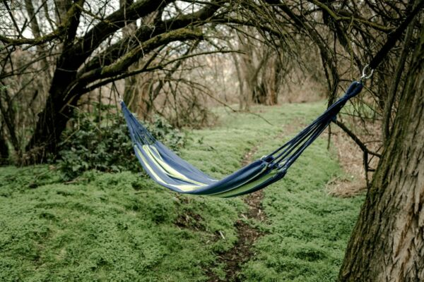 Double Hammock Swing Balboa Cotton Classic Outdoor Free 2 day delivery USA $89.45