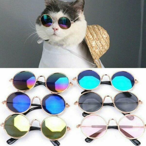 For Cat Little Dog Glasses Pet Eye Glasses Puppy Sunglasses Photos Props NEW $5.75