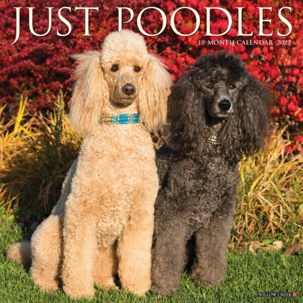 Just Poodles 2022 Wall Calendar Dog Breed Free Shipping $14.99
