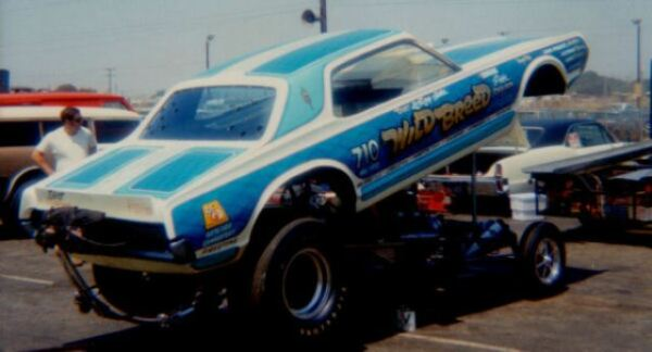 Wild Breed Cougar Funny Car 164th Scale Decals