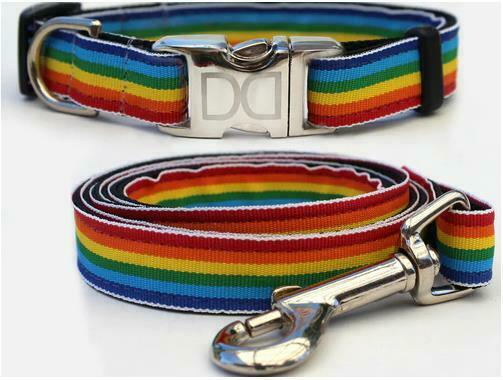 Diva Dog RAINBOW Dog COLLAR PLAIN or CUSTOM BUCKLE 4 Sizes Leash No Leash $14.95