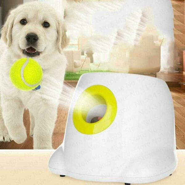 Automatic Dog Interactive Ball Launcher