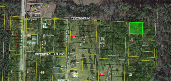 Property for Sale! 0.26 Acres in Lafayette County, AR No Reserve