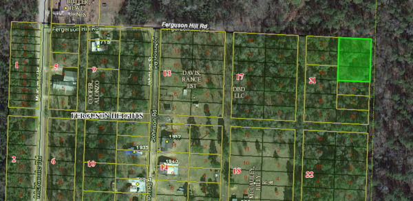 Property for Sale! 0.39 Acres in Lafayette County, AR No Reserve