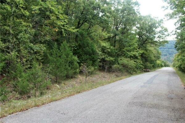 LIVE IN A LAKESIDE PARADISE!! .45 acres in AR